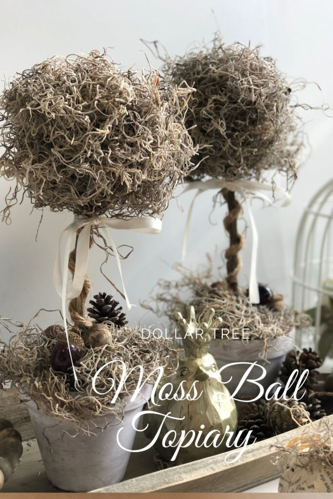 Dollar Tree  styrofoam moss ball topiary. Elegant way to decorate your house all year round. styrofoam ball craft