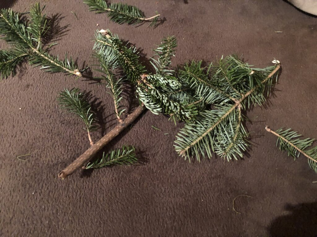 Christmas pine tree clippings