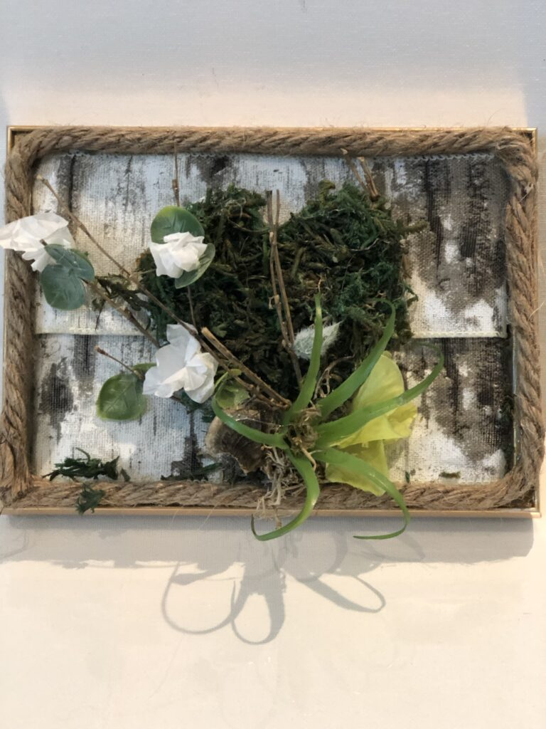 Moss projects are fun and so easy to make. Instant gratitude guaranteed. Moss wall decor idea. Earths Day diy for evergreen decor.
